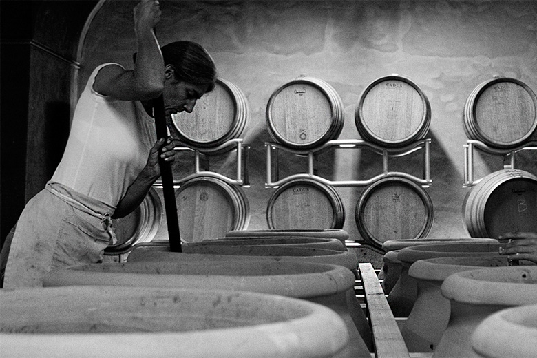 elisabetta foradori italian winemaker anfora