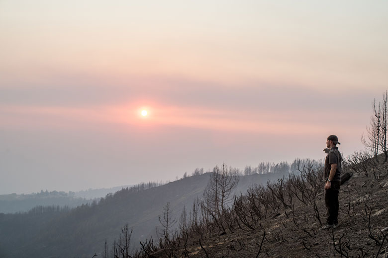 california wine country wildfires